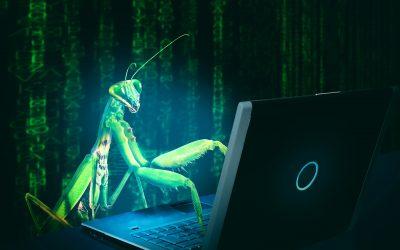 Cos'è un Bug e come risolverlo