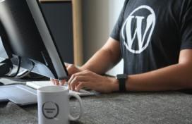 Customizzazione Wordpress