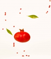 ambroselli