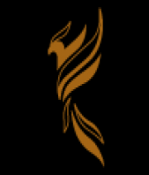 Sviluppo Siti Web Phoenix Design