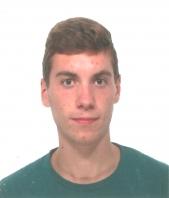 Sviluppo Siti Web Luca Parolari