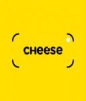 Sviluppo Siti Web cheeselab420