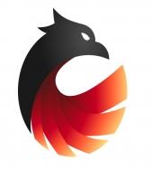Sviluppo Siti Web Phoenix Network